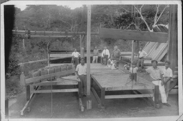 Sun drying in drying screens (bastidores) has been a Family Tradition. Robert Louis Lamastus (dark clothes, 4th from left) and Elida (sitting)owners of Elida Estate, picture taken in 1932. Image courtesy Boquete Coffee.