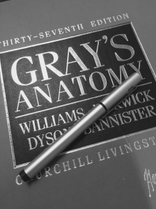 grays_cover