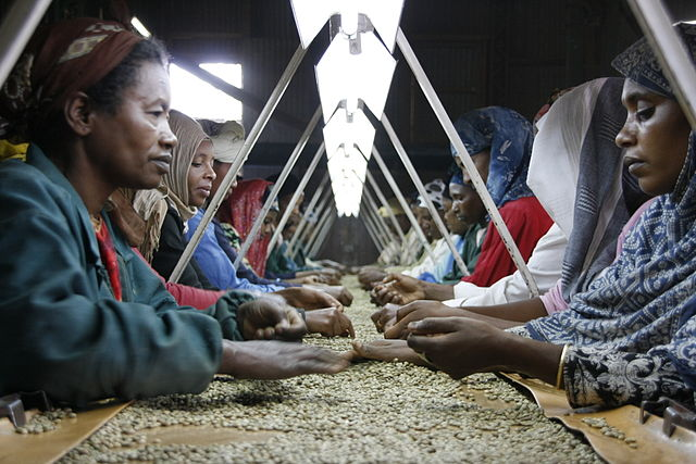 Sorting station in Ethiopia (Photo by