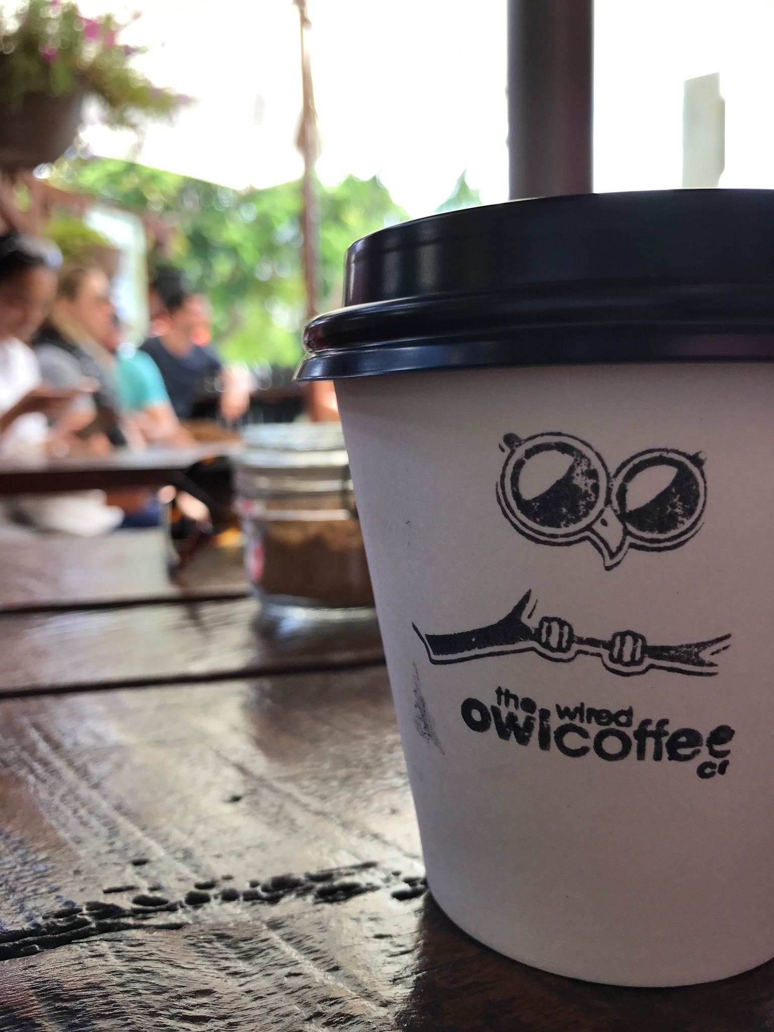 The Wired Owl Coffee Co – Pete Denison